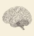 Human brain vintage engraved retro vector image