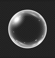 realistic water bubble isolated vector image vector image