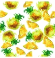seamless pattern of painted pineapple vector image