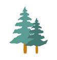 tall tree isolated icon vector image