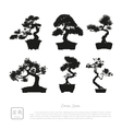 bonsai set black silhouette vector image vector image