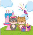 happy birthday cats vector image