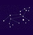 leo constellation starry night sky cluster of vector image vector image