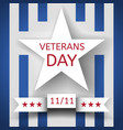 veterans day banner with a white star and a ribbon vector image