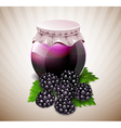 jar of jam with blackberry and leaves vector image