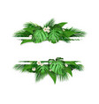banner with tropical leaves and flowers vector image