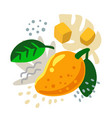 fresh mango on color abstract background vector image vector image