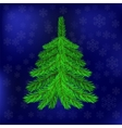 Green Fir on Blue Snowflakes Background vector image