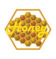 honey honeycombs the inscription runs vector image