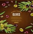 natural olives background vector image vector image