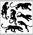 set of wildcats silhouettes vector image