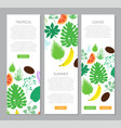 vertical banner with tropical leaves and fruits vector image vector image
