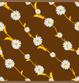 seamless pattern from field chamomiles vector image vector image