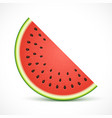 watermelon half slice isolated on white background vector image vector image