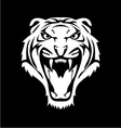 White Tiger Face vector image vector image