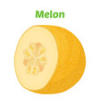 yellow ripe melon cartoon flat style vector image vector image