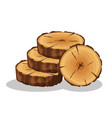 cartoon pile of tree rings isolated on white vector image vector image