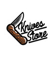 Color vintage knives store emblem vector image