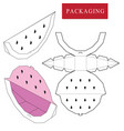 fruit concept package boxpackage vector image