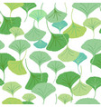 ginkgo leaves green vector image vector image