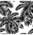 seamless black and white palm leaves and fruit vector image