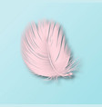 3d realistic falling pink fluffy twirled vector image vector image