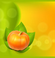 background with pumpkin in leaves vector image vector image