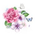 bouquet apple tree flower gypsophila in vector image vector image