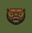 brown grizzly bear wild animal vintage vector image vector image