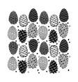 cedar cone set sketch for your design vector image vector image