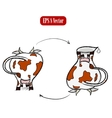 Cow and jug poster vector image