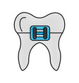 human tooth with bracket vector image vector image
