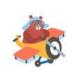 little bear on airplane flat vector image