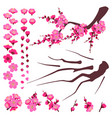 plum blossom elements set vector image vector image