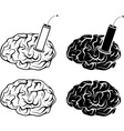 set brains and tnt vector image