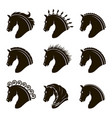 set of horse heads vector image vector image
