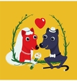 Dogs Bride and Groom Funny Portrait vector image