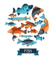 Background with various fish Image for vector image vector image