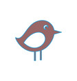 bird icon image vector image