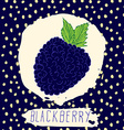 Blackberry hand drawn sketched fruit with leaf on vector image