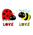 lady bug ladybird bee bumblebee insect icon set vector image vector image