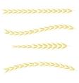 Yellow Wheats vector image vector image