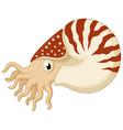 Cartoon nautilus vector image vector image