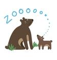 Cute Zoo Animal Kawaii eyes and style vector image vector image