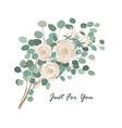 floral bouquet with rose flower and eucalyptus vector image