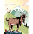 goat male perched on a rock vector image