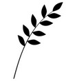 monochrome branch and leaves vector image vector image