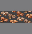 seamless texture with colored cartoon nuts on gray vector image