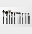 set of black clean professional makeup vector image vector image