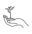 growing plant or sprout with soil in left hand vector image